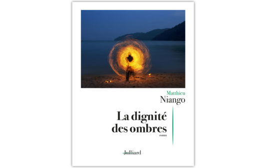 MATTHIEU-NIANGO-La-dignite-des-ombres-_Couv
